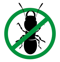 ant pest control geelong